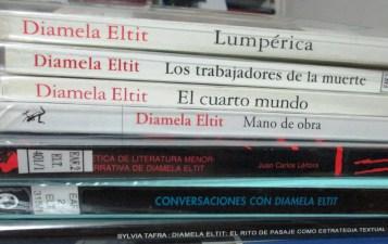 Selección de libros de y sobre Diamela Eltit, incluyendo su primera novela, Lumpérica.